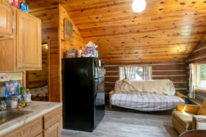 scenic-drive-resort-homestead-cabin-living-room